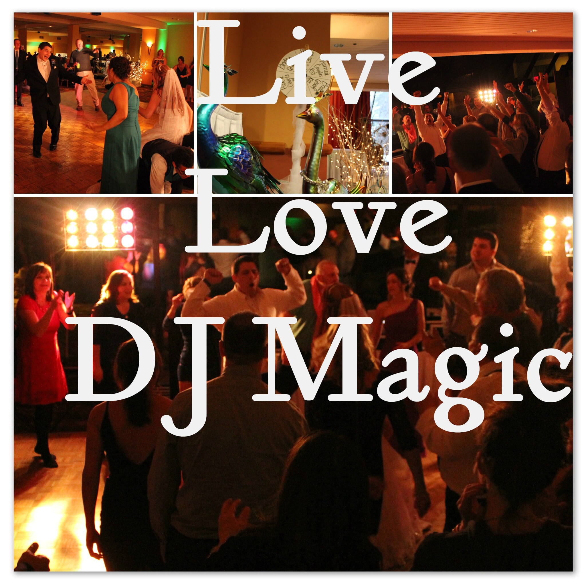 DJ Magic Entertainment is a DJ in Madison, but Why Hire Us?